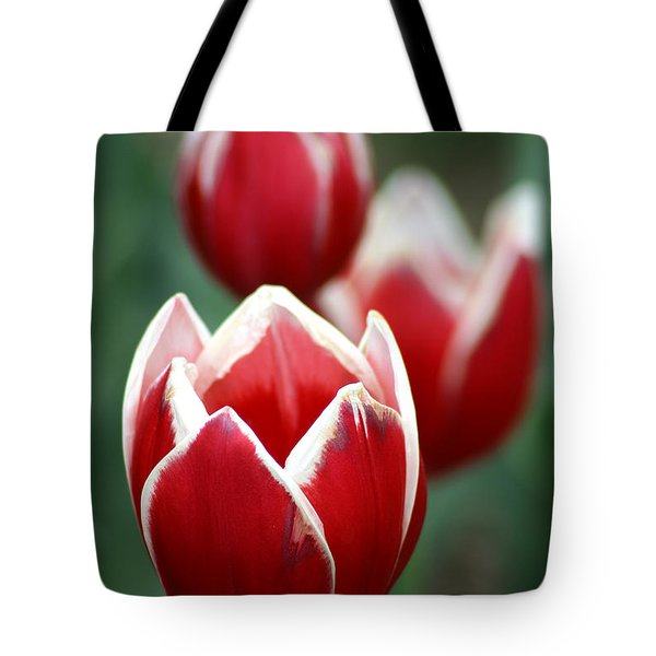 Redwhitetulips6838 Tote Bag by Gary Gingrich Galleries