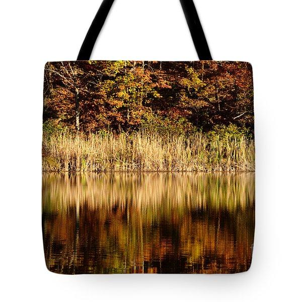 Refections In Water Tote Bag by Dan Friend