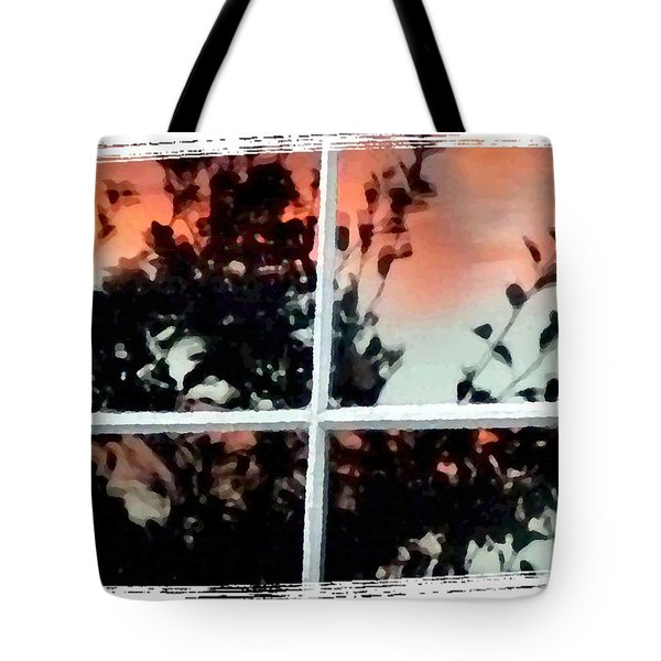 Reflections In An Old Window Tote Bag by Will Borden
