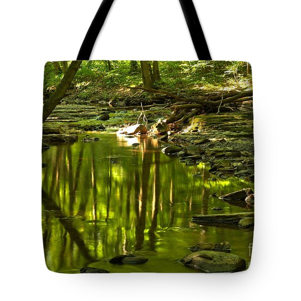 Reflections In Hells Hollow Creek Tote Bag by Adam Jewell
