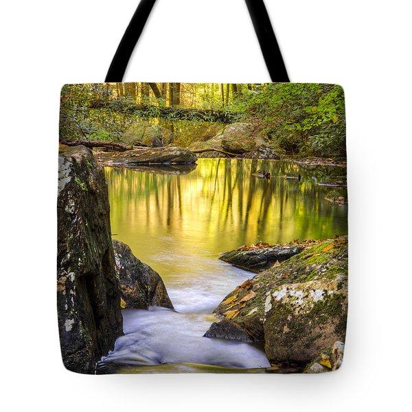 Reflective Pools Tote Bag by Debra and Dave Vanderlaan
