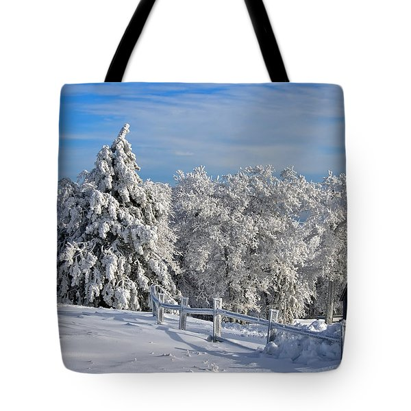 Refresh Tote Bag by Lois Bryan