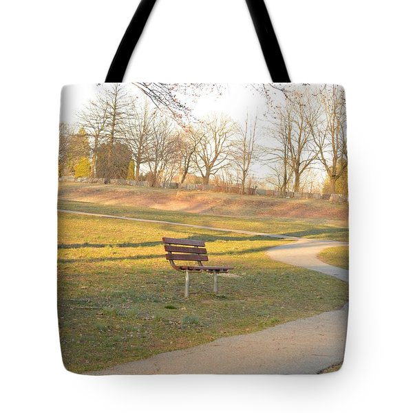Relaxing  Evening Tote Bag by Sonali Gangane