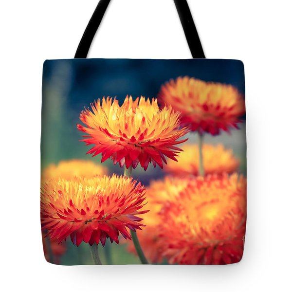 Release My Voice Tote Bag by Sharon Mau