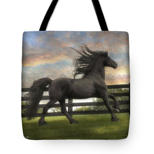Remains Of The Day Tote Bag by Fran J Scott