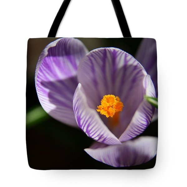 Remembrance Tote Bag by Neal  Eslinger
