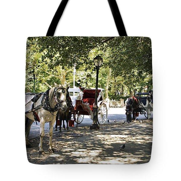 Rest Stop - Central Park Tote Bag by Madeline Ellis