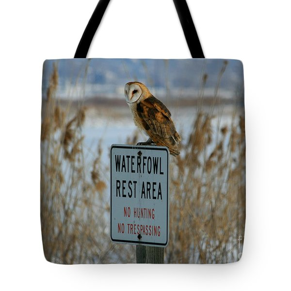Resting Owl Tote Bag by Marty Fancy
