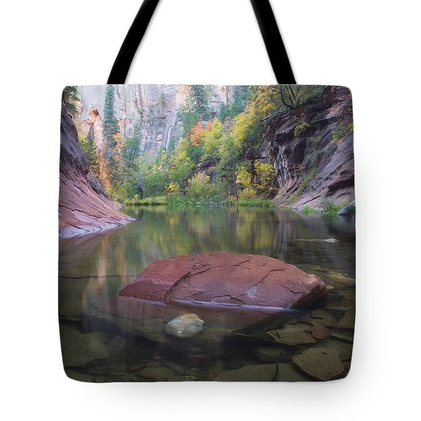 Revisited Tote Bag by Peter Coskun
