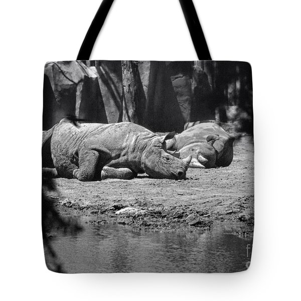 Rhino Nap Time Tote Bag by Thomas Woolworth