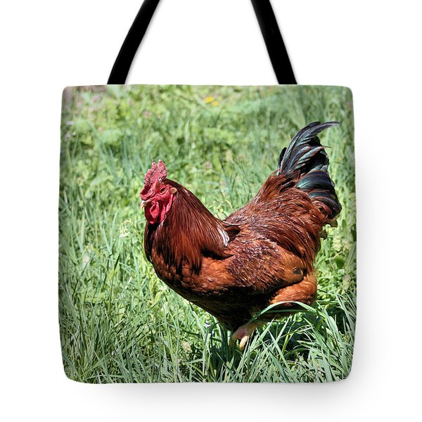 Rhode Island Red Tote Bag by Kristin Elmquist