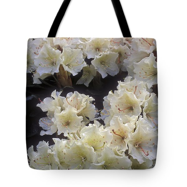 Rhododendrons Tote Bag by Anonymous