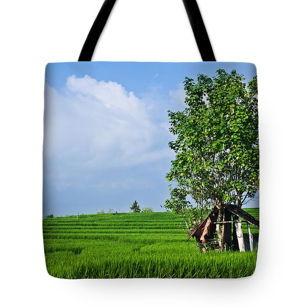Rice Fields Tote Bag by Nila Newsom