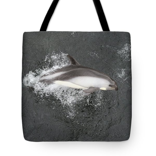 Riding The Bow Tote Bag by Tony Beck