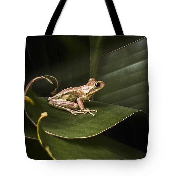 Riding the Wave Tote Bag by Debra and Dave Vanderlaan