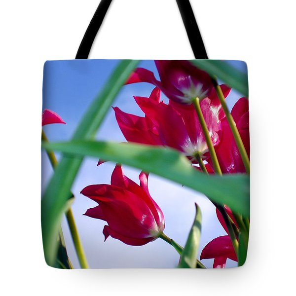 Riding The Wind Tote Bag by Meaghan Troup