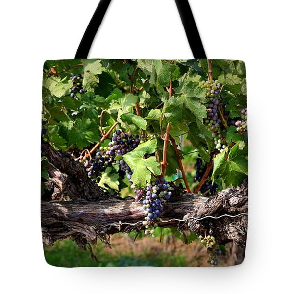 Ripening Grapes Tote Bag by Carol Groenen