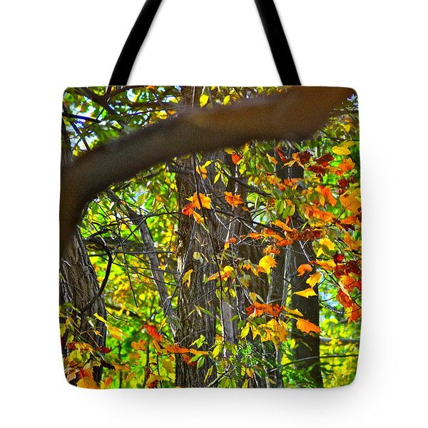 Ripples Tell The Story Tote Bag by Frozen in Time Fine Art Photography