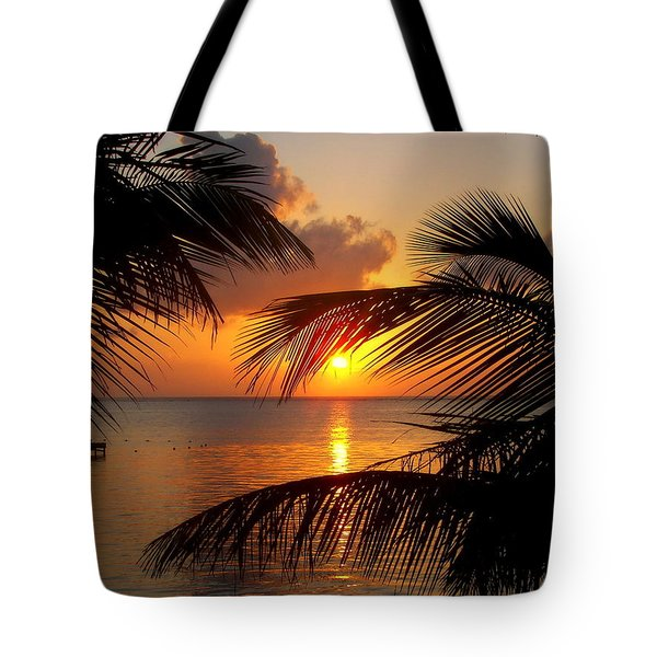Rise And Behold Tote Bag by Karen Wiles