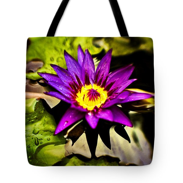 Rise And Shine Tote Bag by Scott Pellegrin