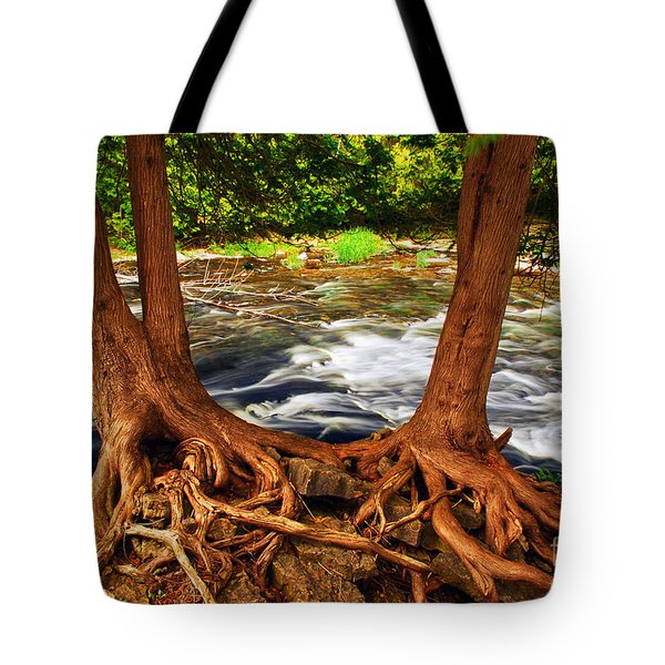 River Tote Bag by Elena Elisseeva