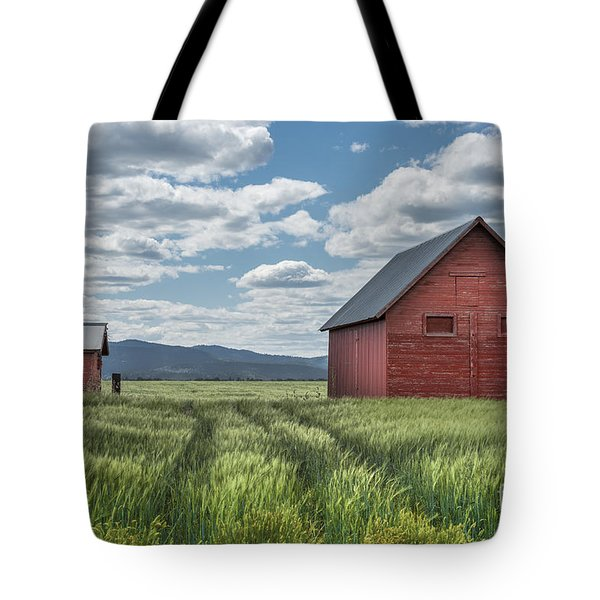 Road To Nowhere Tote Bag by Sandra Bronstein