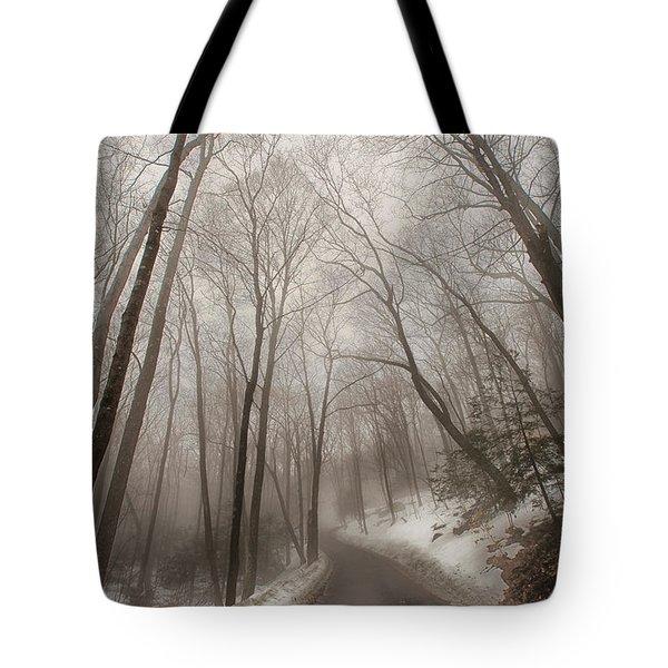 Road To Winter Tote Bag by Karol Livote
