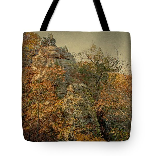Rock Formation Tote Bag by Sandy Keeton