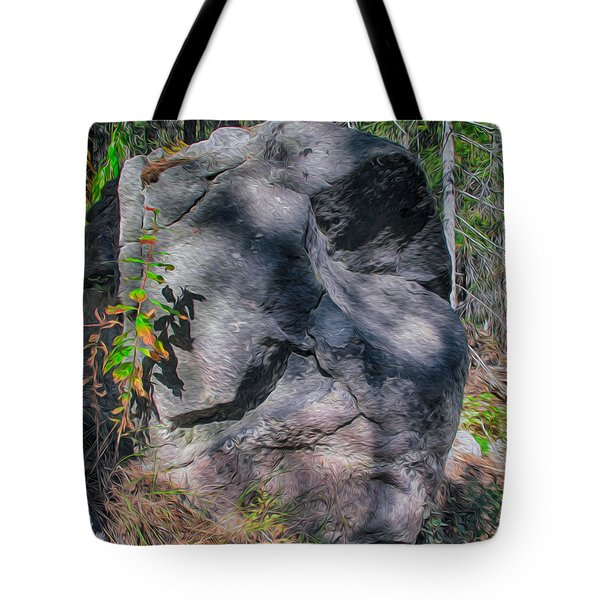 Rocky Ancestor Tote Bag by Omaste Witkowski
