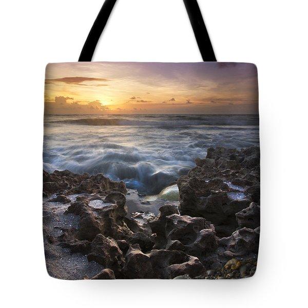 Rocky Shore Tote Bag by Debra and Dave Vanderlaan