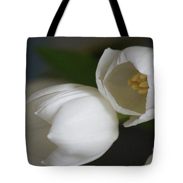 Romantic White Tote Bag by Carol Lynch