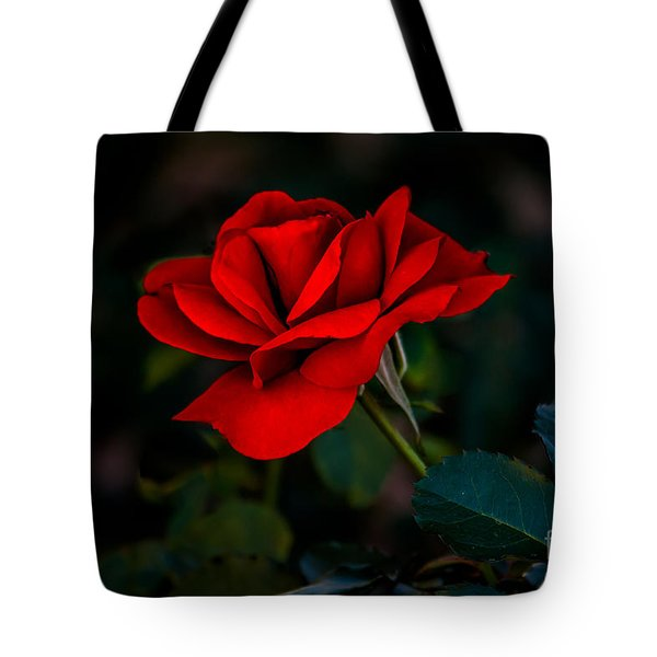 Rose Is A Rose Tote Bag by Robert Bales