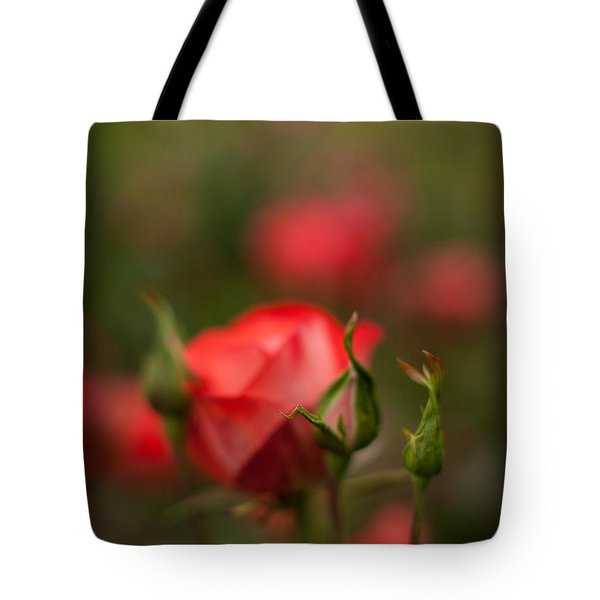 Rosehip Edge Tote Bag by Mike Reid