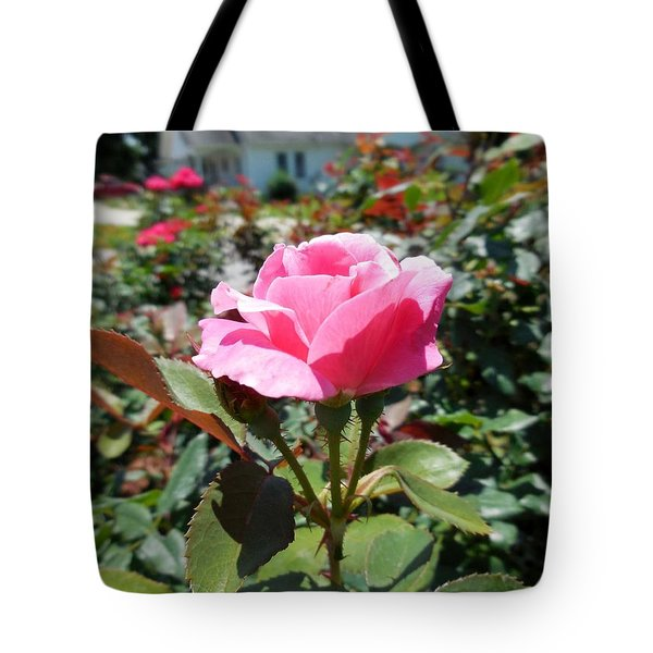 Roses Near A Country House Tote Bag by Eloise Schneider