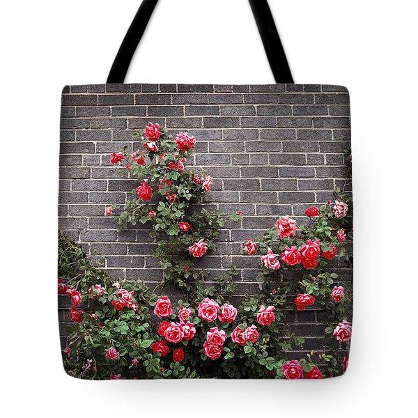 Roses on brick wall Tote Bag by Elena Elisseeva