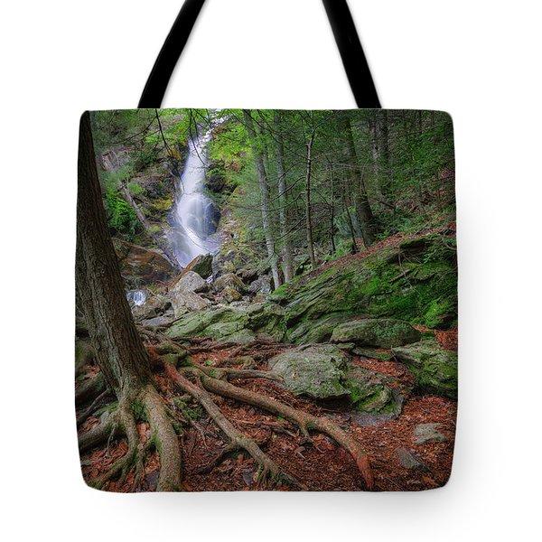 Rough Terrain Tote Bag by Bill  Wakeley