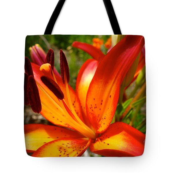 Royal Sunset Lily Tote Bag by Jacqueline Athmann