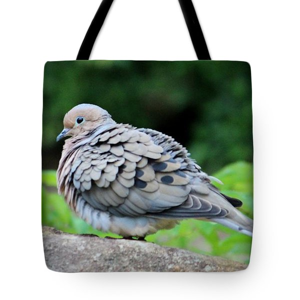 Ruffled Feathers Tote Bag by Cynthia Guinn