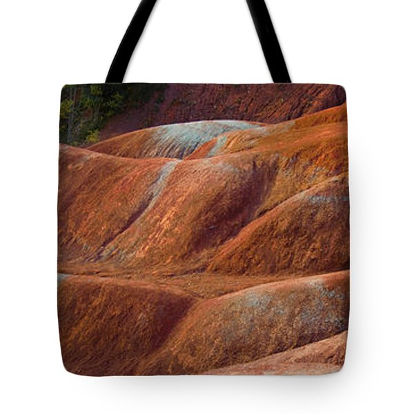 Rusty Land Tote Bag by Barbara McMahon