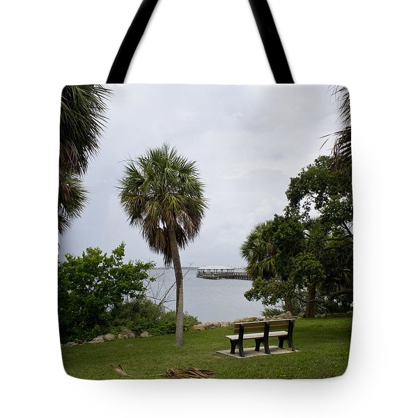 Ryckman Park in Melbourne Beach Florida Tote Bag by Allan  Hughes