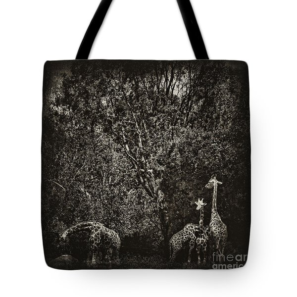 Safe Tote Bag by Andrew Paranavitana
