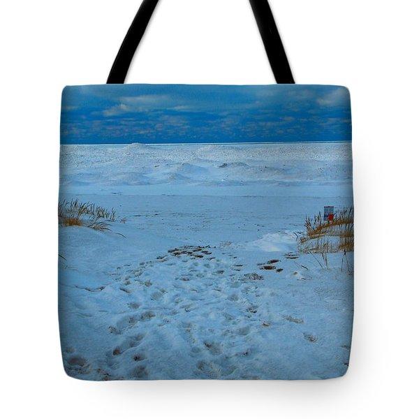 Saint Joseph Michigan Beach In Winter Tote Bag by Dan Sproul
