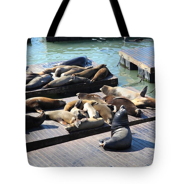 San Francisco Pier 39 Sea Lions 5D26113 Tote Bag by Wingsdomain Art and Photography