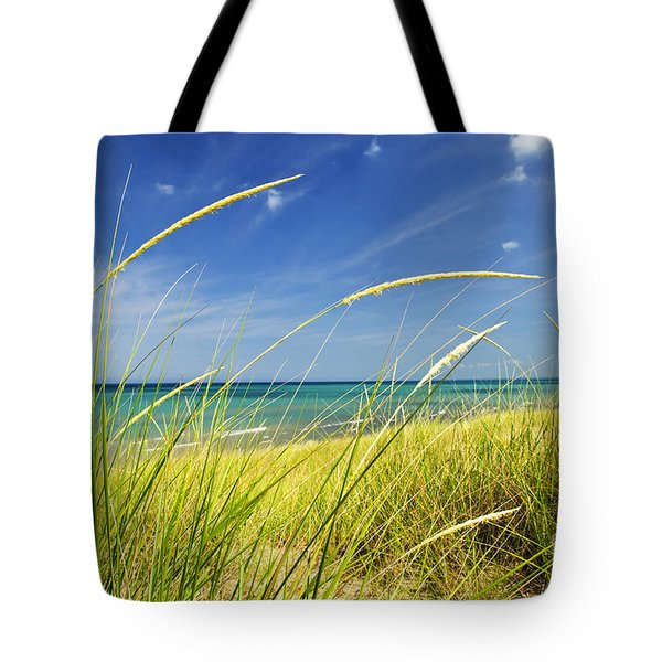 Sand Dunes At Beach Tote Bag by Elena Elisseeva