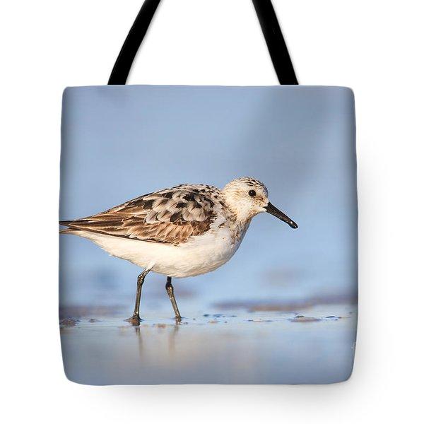 Sanderling Tote Bag by Clarence Holmes