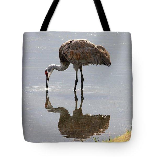 Sandhill Crane on Sparkling Pond Tote Bag by Carol Groenen