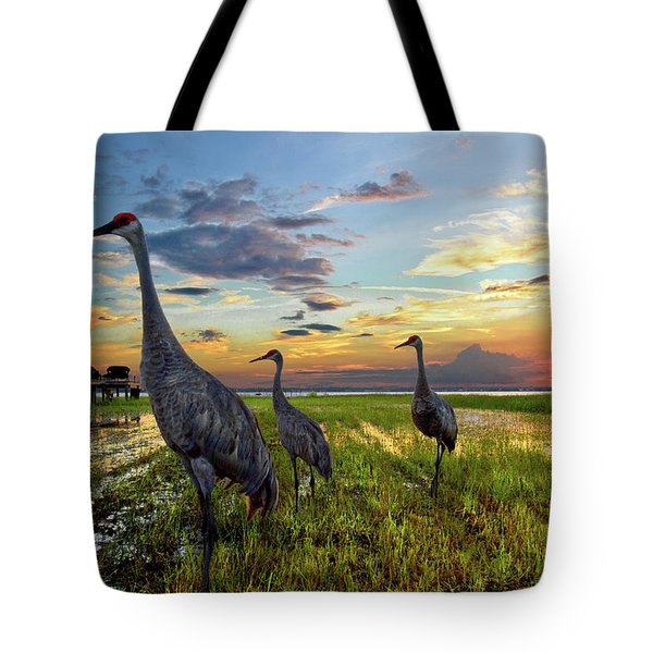 Sandhill Sunset Tote Bag by Debra and Dave Vanderlaan