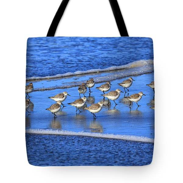 Sandpiper Symmetry Tote Bag by Robert Bynum