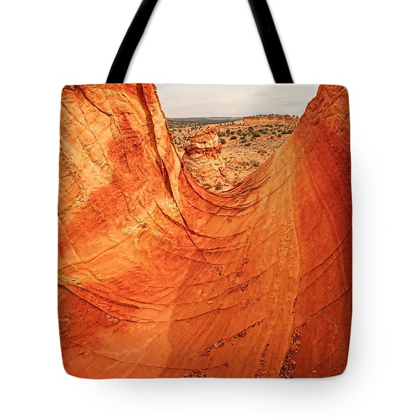 Sandstone Bowl Tote Bag by Inge Johnsson