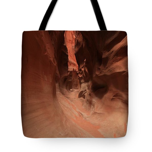 Sandstone Twists And Turns Tote Bag by Adam Jewell